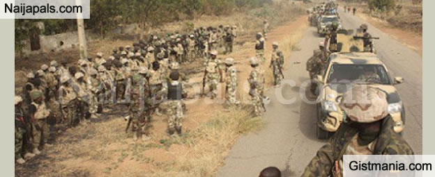 Nigerian Army Release Hot Lines As Its Set To Begin Operation 'Cat Race' To Tackle Herdsmen Killings